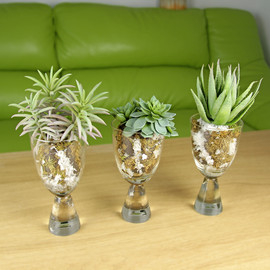 Set of 3 Artificial Succulents in Snow