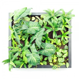 Artificial Plants Wall Art